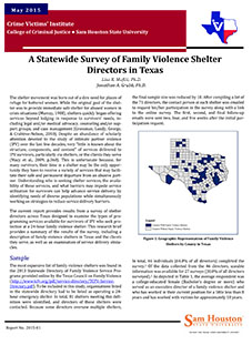 Front cover of shelter report